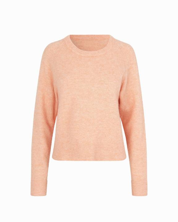 jersey coral primavera